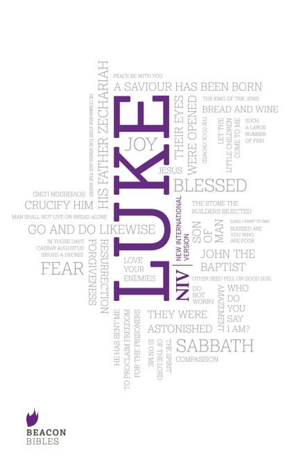 Image result for gospel of luke niv